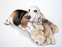 Pet portrait of a Bassett hound with her toy