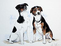 Pet portrait of two Jack Russells